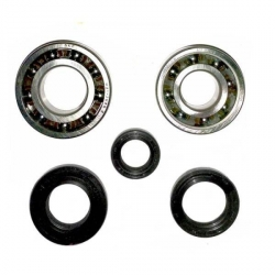 Oil seal and Bearing set for crankshaft Morini