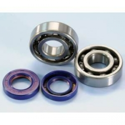 Polini crankshaft bearings + oil seals set for Derbi Euro 2 and 3