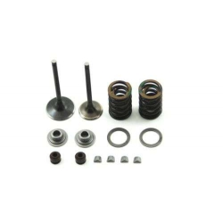Valves repair kit by TB Parts for Klx / Ksr