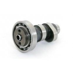 Takegawa camshaft for SuperHead + R 4V