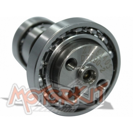 Camshaft 240° for Anima 190cc with decompressor