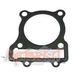 Gasket head cylinder Anima