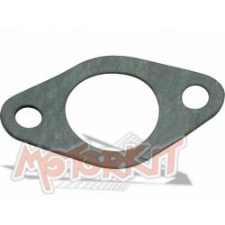 Tansionner cam chain gasket Anima