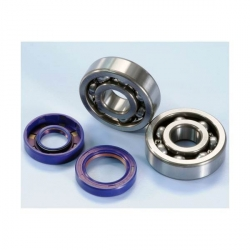 Bearing + Spi Polini for AM6 Crankshaft
