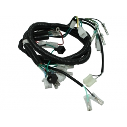 """Dax"" Hunter Wiring harness"