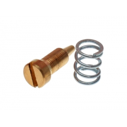 Screw and spring for air adjustement Polini CP 343.0005