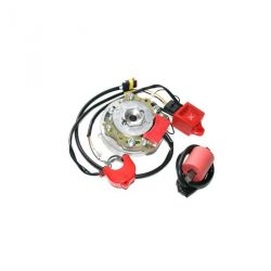 Ignition inner-rotor HPI 2curves for moteurs Derbi et Minarelli AM6