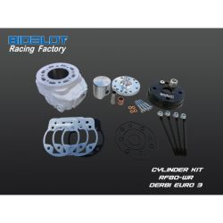 Racing Factory kit 96cc -WR DERBI EURO 3