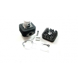 Kit Top performance Ø48mm Black Trophy Piaggio AC