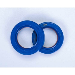 Polini Teflon and Viton Oil Seals for crankshaft Minarelli AM6
